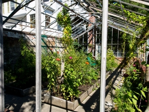 Pond House - Greenhouse Garden