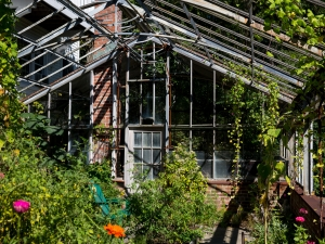Pond House - Inside Greenhouse